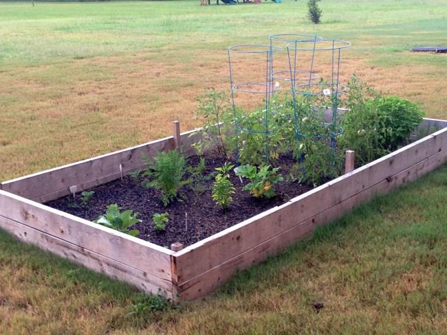 starting a raised bed garden