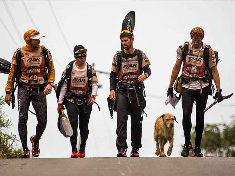 Arthur the dog in ARW 2014. Photo by Krister Göransson / Peak Performance