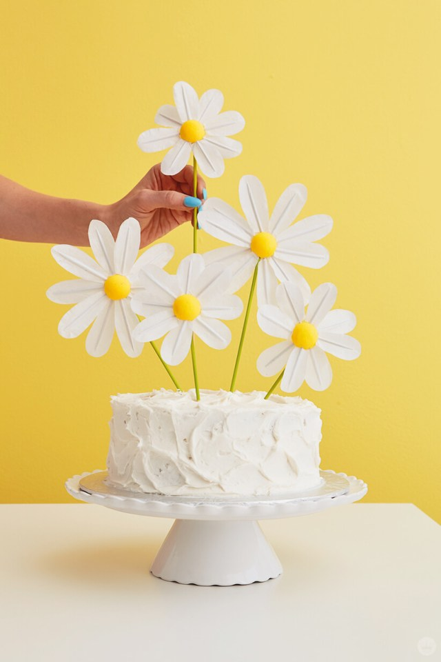 Adding finished DIY Daisy Cake Toppers to a white frosted cake