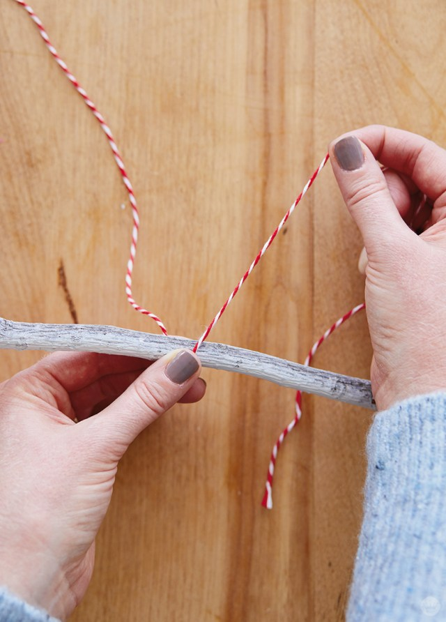 Tying bakers twine around a twig to create a Winter branch Christmas card holder