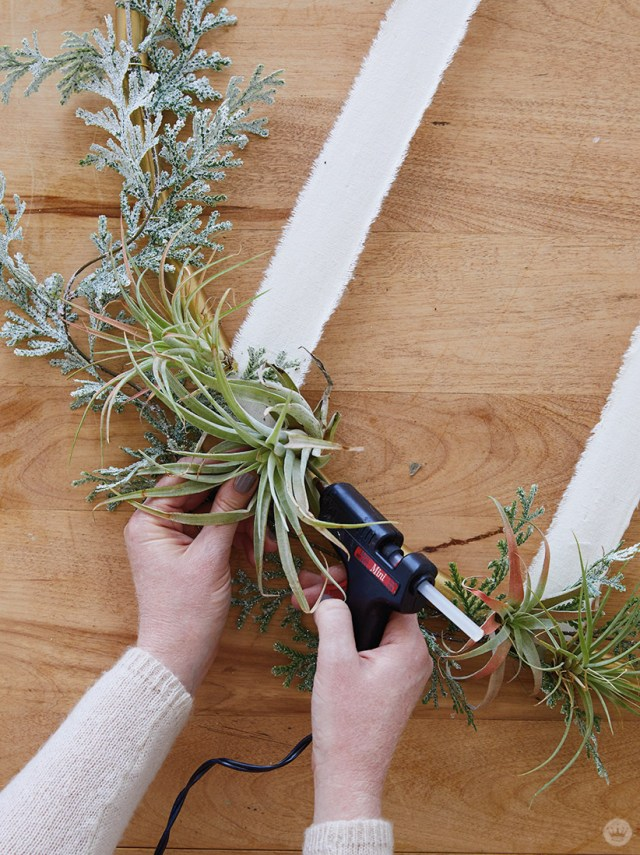 Attaching greenery to a Gold Hoop Christmas Card Display