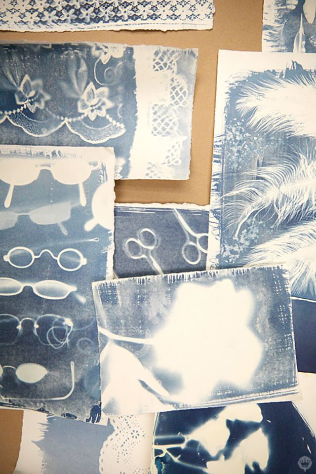 Cyanotype workshop results