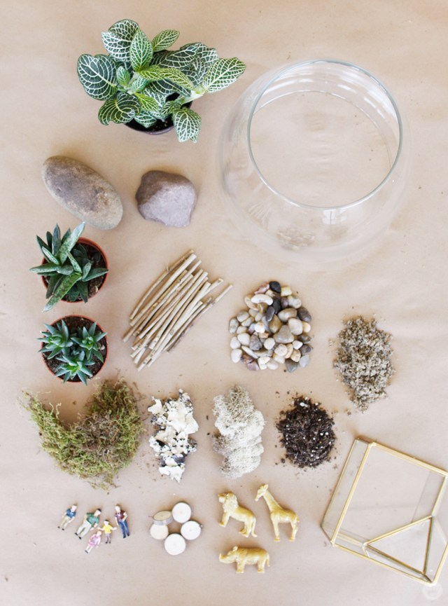 Supplies for DIY Planter/Terrarium: plants, rocks, sticks, sand, moss, soil, container, accessories.