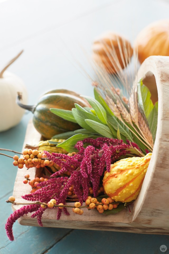 Wooden vessel filled with seasonal plants
