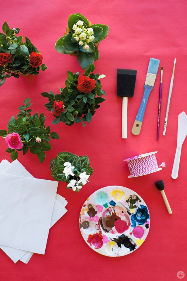 DIY Galentine's Day gifts: supplies like plants, canvas wraps, paint, brushes, and bakers twine.