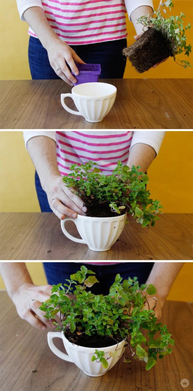 Herb Mug | thinkmakeshareblog.com