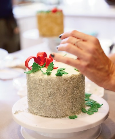 Holiday Cake Decorating | thinkmakeshareblog.com