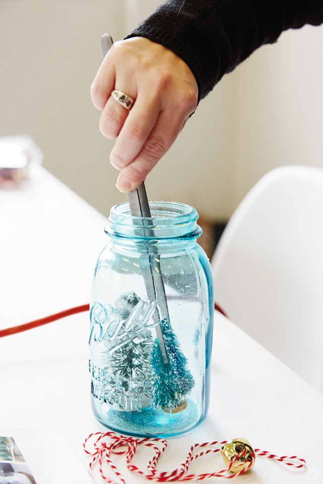 Placing trees in a mason jar