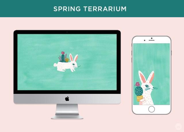 Free digital March wallpapers: Spring Terrarium