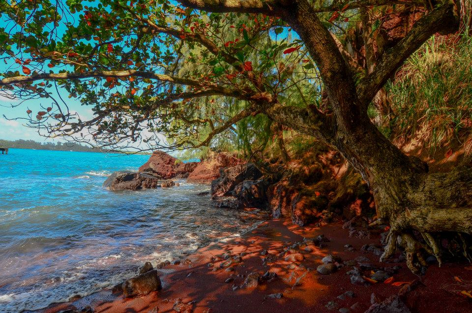 The coast of the island of Maui, Hawaii | Photograph by Steve Adcock :)