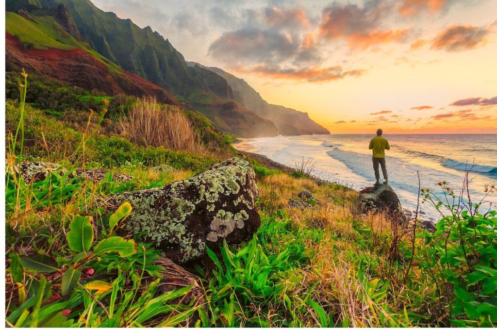 Freedom in Hawaii