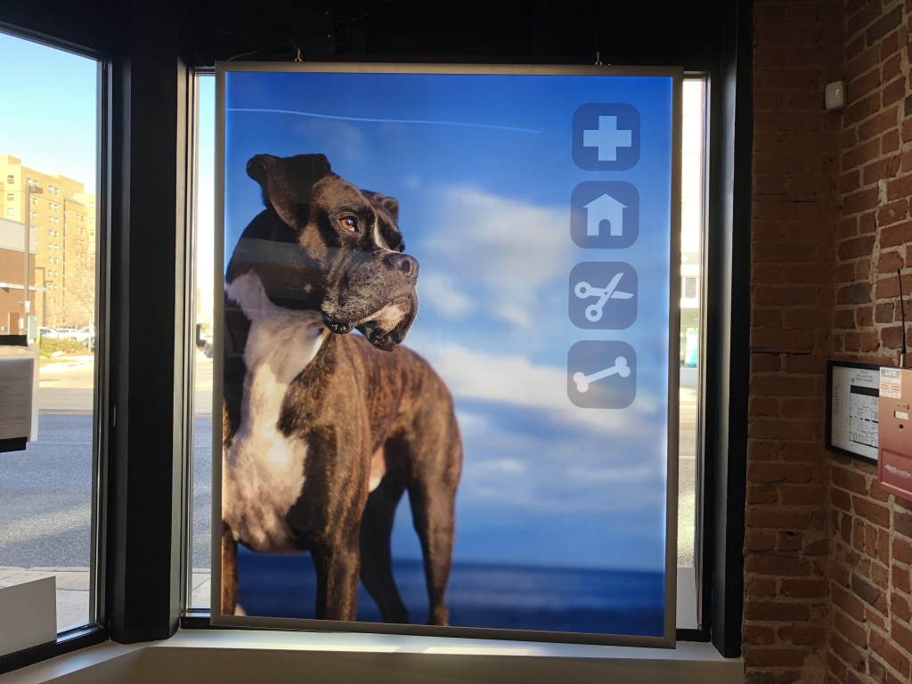 Pet Store Double Sided Snap Frame