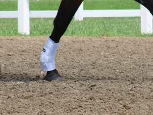 SMB Horse Boot flexible