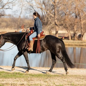 ThinLine Endurance Waxed Saddle Pad Tan Lifestyle