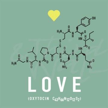 love, romance, romantic, chemistry, typography, lettering, seattle art
