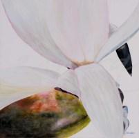 """White Magnolia"""