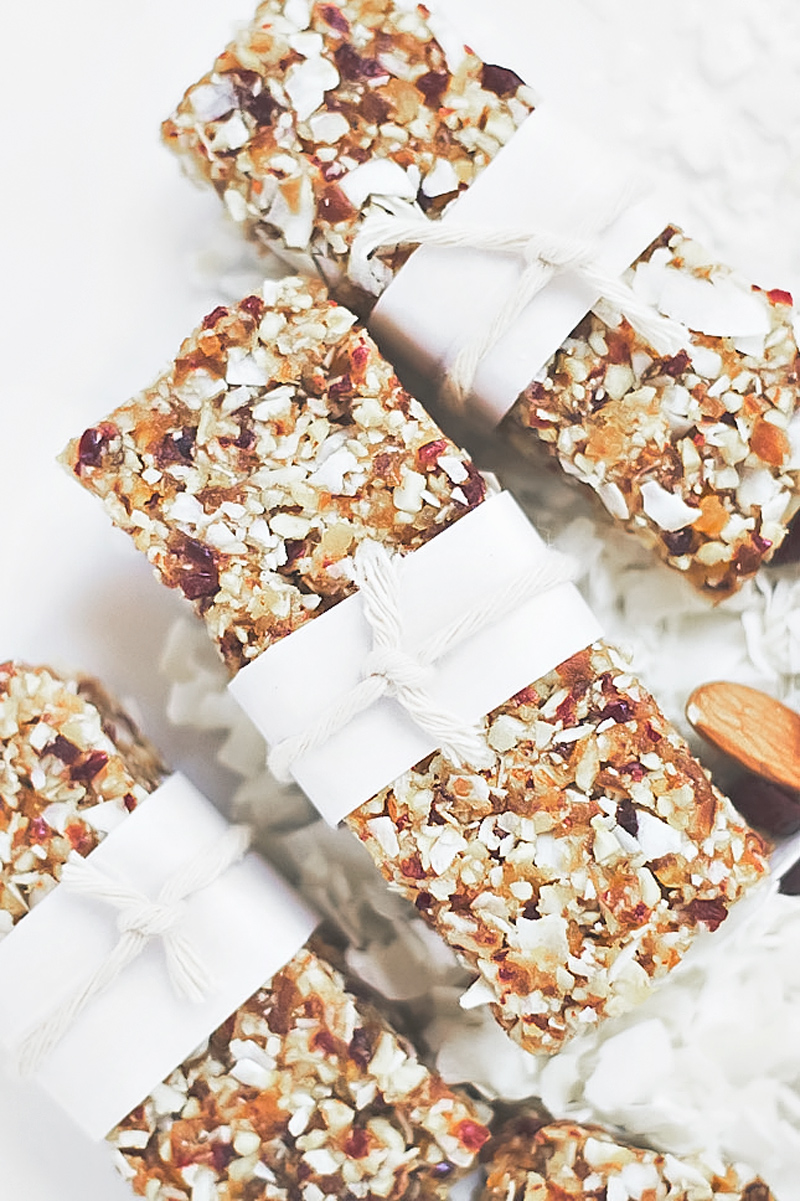Homemade Vegan Raw Bars