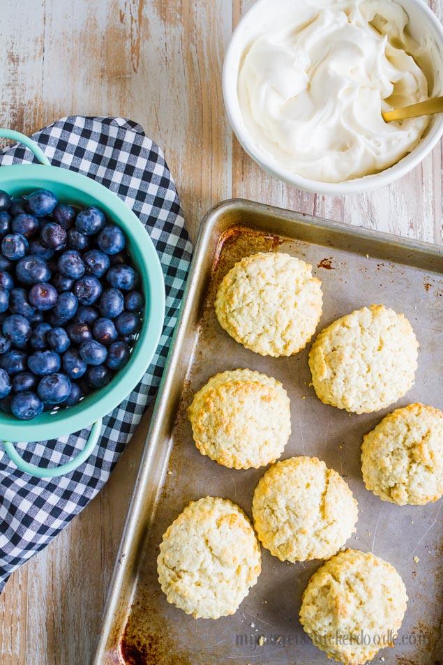 Shortcake Recipe Scratch