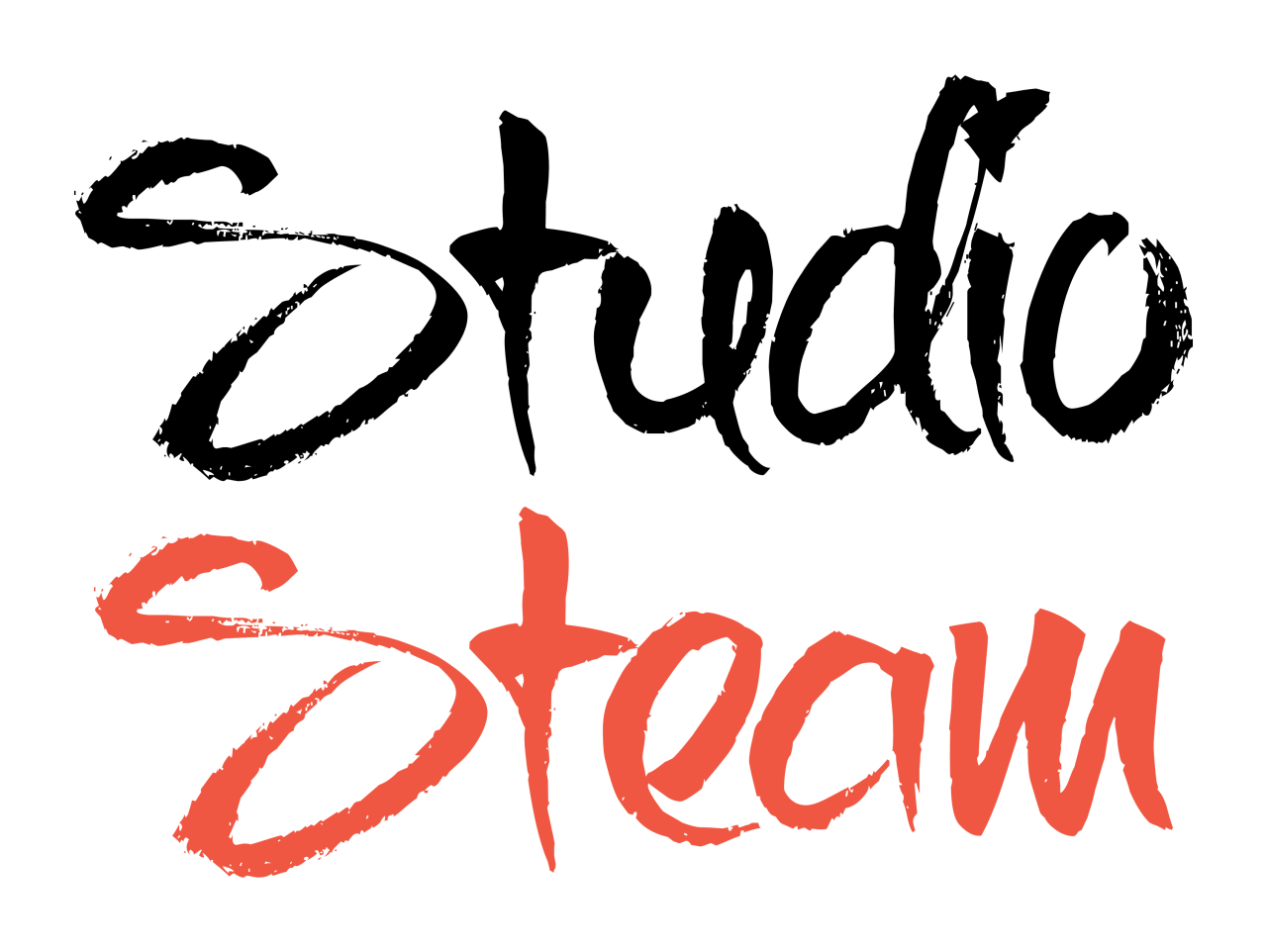 Studio Steam Partner