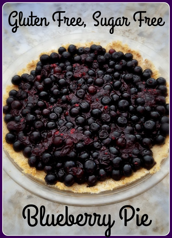 Gluten Free Sugar Free Blueberry Pie