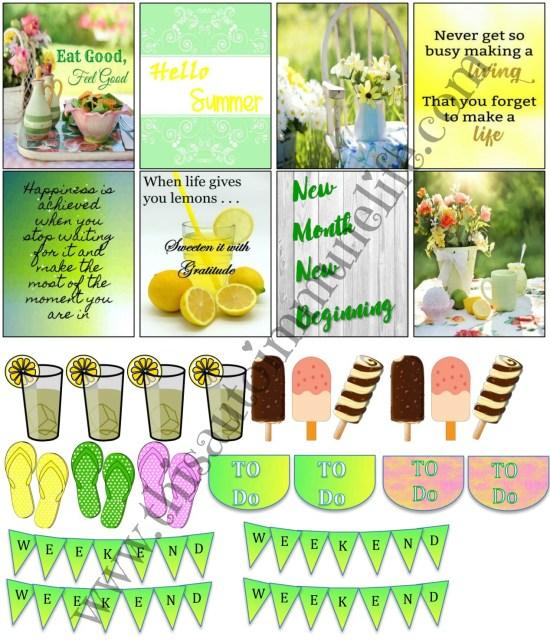 June Planner Stickers