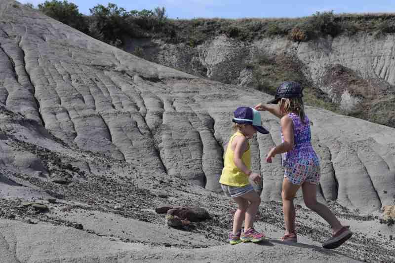 Dinosaur Provincial Park Tours