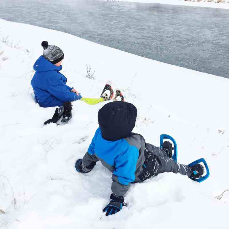What to do in Fish Creek Park in Winter