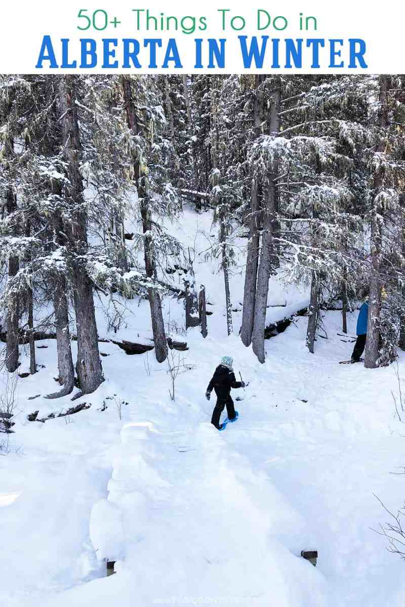 50 Plus Things to Do in Alberta in Winter