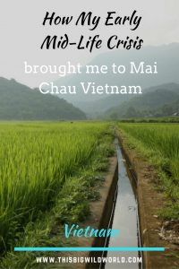 Image of the irrigation channels through the rice fields in Mai Chau Village Vietnam.