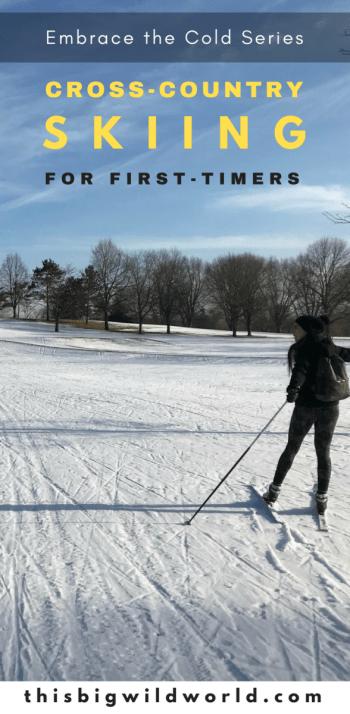 Pin image of a person cross-country skiing in Minneapolis Minnesota.
