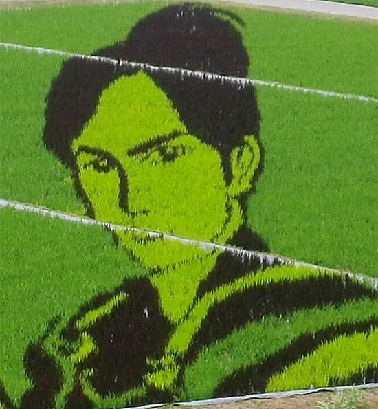 boy-rice-art