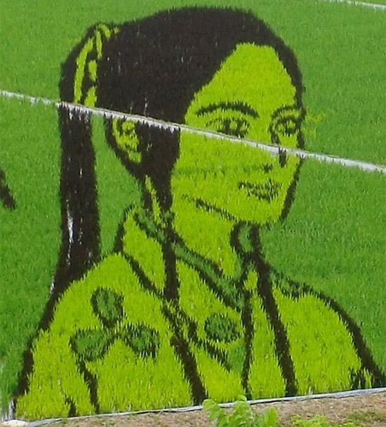 girl-rice-art
