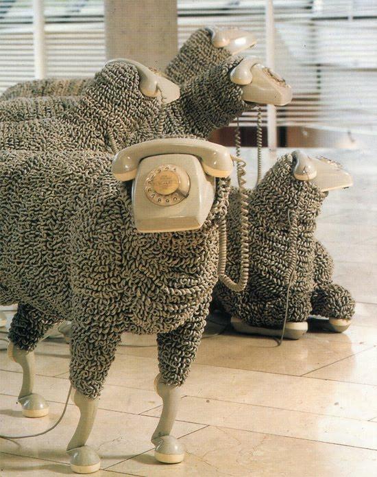 phone-sheep