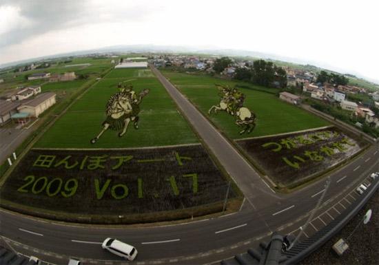 rice-art-field