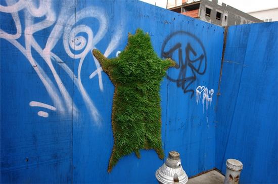 green-graff