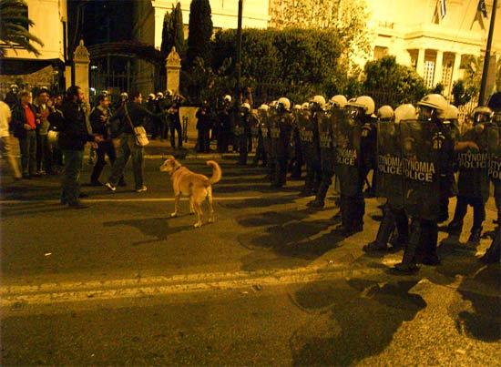 athensriotdog