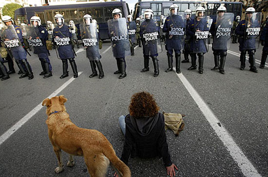 riot-dog-2008