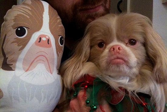 stuffed-dog