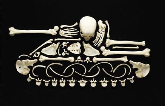 bone-tank
