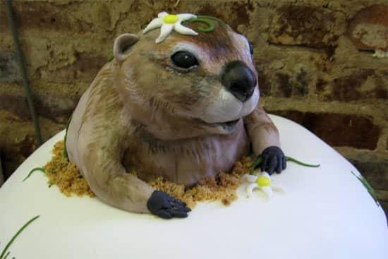 groundhog-cake