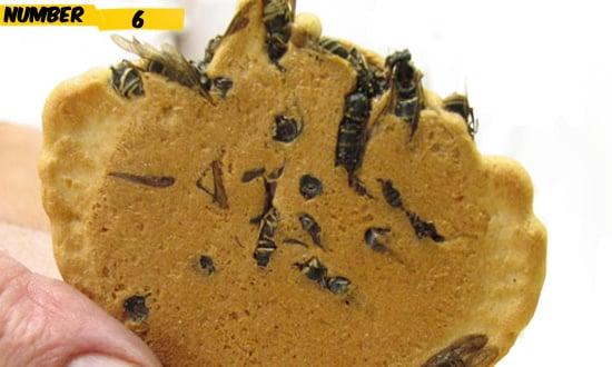 buiscit-bee-food