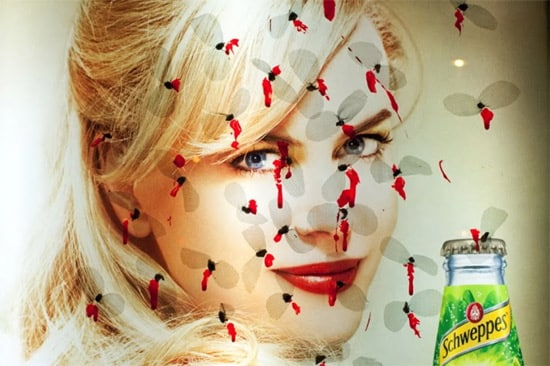 lady-mosquito