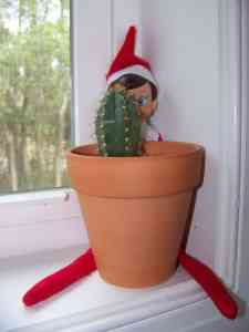 Nobody puts baby Elf on a shelf in the corner