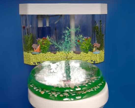 The Fish Tank Toilet and the Weird and Scary Toilets
