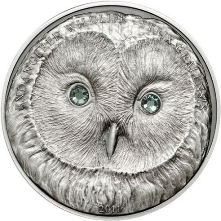 The Silly Owl Coin