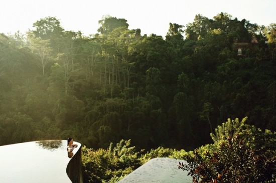 Exciting Swimming Pools and The Jungle Pool, Bali