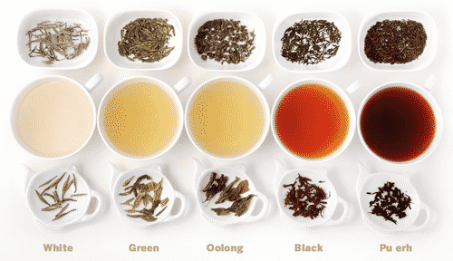 5 Teas With Magical Properties