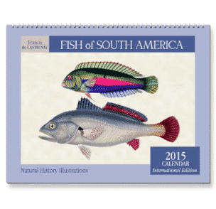 The Strangest and Most Exciting 2015 Calendars