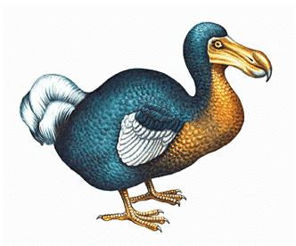Extinct Animals and the Dodo