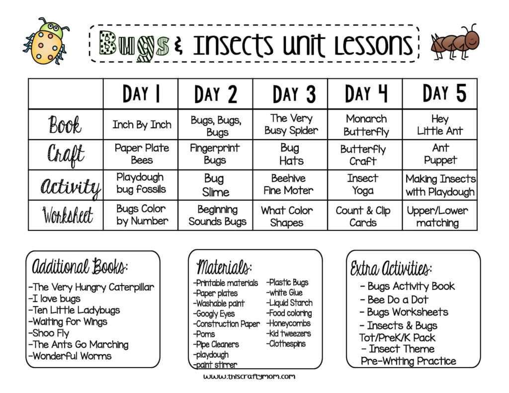 Free Bugs Amp Insects Preschool Unit Plan